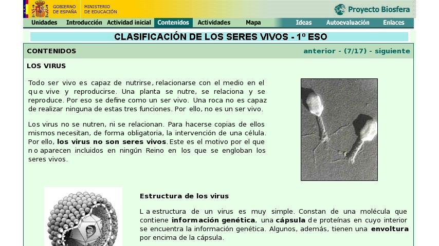 Los Virus Curriki