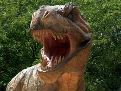 Sample image (T-Rex)