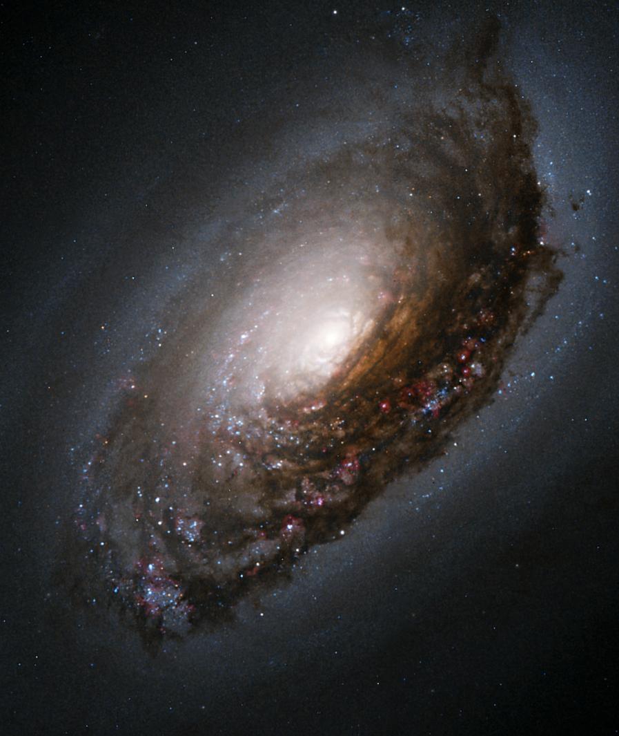 The Black Eye Galaxy